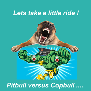 When Pitbull mets Copbull !